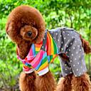 Dog Pants Orange Winter Stripe