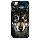 Buy Creative Wolf Pattern Painted TPU Material phone Case iPhone 7 7plus 6S 6plus SE