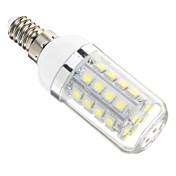 E14 5W 36x5050SMD 480LM 6000-6500K 차가운 백색 빛 LED 옥수수 전구 (AC 220-240V)