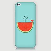 iphone5c에 대한 수박 패턴 전화 뒷면 케이스 커버