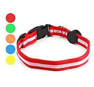 stile striscia modello ha portato collare di cane (30-40cm/11.8-15.7inch, colori assortiti)