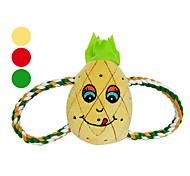 di frutta cigolio giocattolo sul mercato per i cani (27cm, colori assortiti)