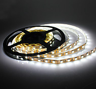 5M 14W 300x5050 SMD White Light LED Strip Lamp (DC 12V)