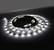 10M 60W 300x5050 SMD luz blanca de la lámpara LED Strip (12V)