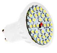 Spot Blanc Froid GU10 3 W 36 SMD 3528 280 LM AC 100-240 V