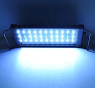 LED-lampa för 30-40 cm akvarium