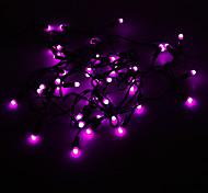 5M 3W 50-LED Purple Light LED Strip Light (220V)