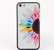 Sunflower Hard Back Case for iPhone 5C