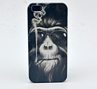 Smoking Monkey Pattern Hard Case for iPhone 5/5S