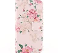 Flower Design Of Pink PU Ledertasche mit Kartensteckplatz für iPhone 5/5S