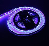 5M 72W 300x5050SMD Blue Light Lampe LED Strip (12V DC)
