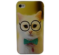 Cute Kitten Pattern PC Back Case for iPhone 4/4S