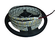 Waterproof 5M 72W 300*5050 SMD 4800LM  White Light LED Strip Lamp(DC12V)