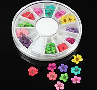 36PCS 12 Colours Natural Dried Flower Wheel Nail Art Decoration
