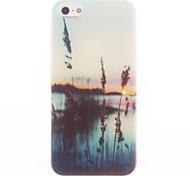 hierba y el estuche blando diseño mar para el iphone 5 / 5s
