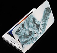 Cartoon Cat Series Leather Full Body Case for Samsung Galaxy S2 I9100 (Assorted Color)