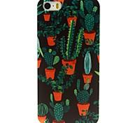 patrón de plantas de cactus estuche de plástico duro para el iphone 5 / 5s