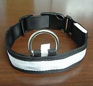 Adjustable Fashionable Flashing Nylon LED Light Pet Dog Collar Safety Collar for Christmas (DD-WT, White, M)
