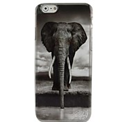 A Mighty Elephant Plastic Hard Back Cover for iPhone 6 Plus
