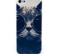 Kitten Wearing Glasses Pattern hard Case for iPhone 6