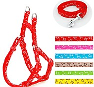 Stars Laced Styles  Nylon Harness and Leashes Set for Dogs and Pets (assorted colours)