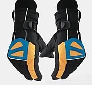 Full-finger Gloves / Winter Gloves Women's / Men's / Unisex Waterproof / Keep Warm / Anti-skidding / Breathable Ski & Snowboard / Skating