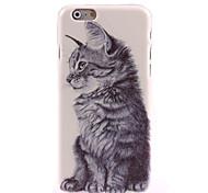 Cat Design Hard Case for iPhone 6 Plus