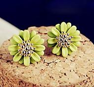 kleine Gänseblümchen Blumen Ohrstecker