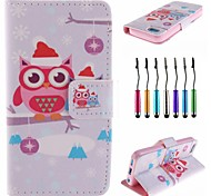 Owls Wear Santa Hat Pattern PU Leather Full Body Case with Touch Pen for iPhone 5C