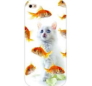 Cat Pattern Hard Back Case for iPhone 4/4S