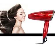 Hair Dryer (1200W)