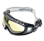 Anti-Dust Acrylic Fashion Ski Goggles