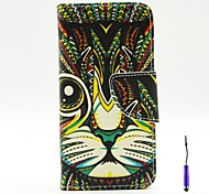 Persian Cat Pattern PU Leather Case Cover with A Touch Pen ,Stand and Card Holder for iPhone 5C