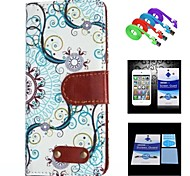 Decorative Design Pattern Full Body Case+1 HD Screen Protector+1 USB Data Transmit and Charging Cable for iPhone 5/5S
