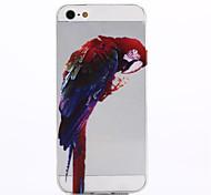 iPhone 5S - Cover-Rückseite - Transparent/Ultra dünn/Tiermotiv ( Mehrfarbig , TPU )