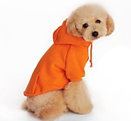 Hunde Kapuzenshirts Orange Hundekleidung Frühling/Herbst Klassisch Urlaub