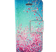 Cherry bBossoms Pattern Hard Case with Card Slot and Matte PC Back Cover for iPhone4/4S