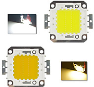 DIY 20W 1900-2500LM 2800-6000K Cold White/Warm white High Power Chip Integrated LED Module (DC12V)