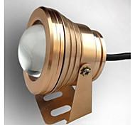 10w 1000lm llevó la luz de la lámpara de inundación impermeable bajo el agua con lentes de cristal convexas (12-18V) (jin shai)