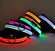 Colliers - Chiens/Chats - Lampe LED - Couleurs Aléatoires - en Nylon -