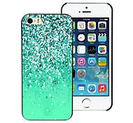 Green Sand Design Aluminum Hard Case for iPhone 5C