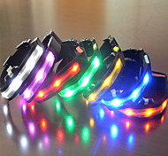 Dog Collar LED Lights Rainbow Nylon