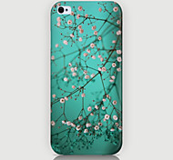 The Small White Flowers Pattern Phone Case Back Cover Case for iPhone5C
