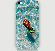 Pineapple Pattern Phone Back Case Cover for iPhone5C