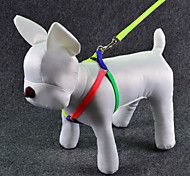 The New Dog Leashes