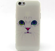 Cute Cat Pattern TPU Painted Soft Back Cover for iPhone 5/5S
