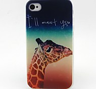 Giraffe Pattern TPU Material Soft Phone Case for iPhone 4/4S