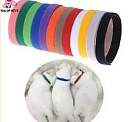 Cat / Dog Collar Casual Solid Multicolor Nylon