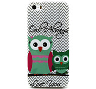 Owl  Pattern TPU Soft Case for iPhone 5/5S
