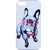 Puppy Pattern PC Phone Case For iPhone 5/5S